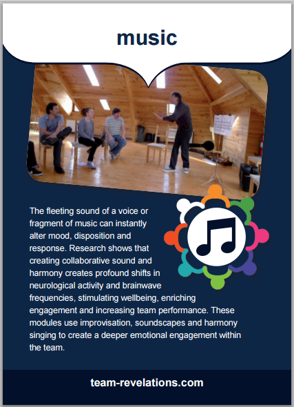 The fleeting sound of a voice or fragment of music can instantly alter mood, disposition and response. Research shows that creating collaborative sound and harmony creates profound shifts in neurological activity and brainwave frequencies, stimulating wellbeing, enriching engagement and increasing team performance. These modules use improvisation, soundscapes and harmony singing to create a deeper emotional engagement within the team.